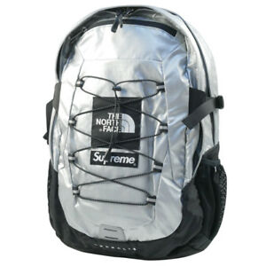 SUPREME  THE NORTH FACE 18 SS Metallic Borealis Backpack SILVER FREE