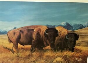 RUGER ARTIST PROOF #79? of 95 Signed Buffalo Bison Art Lithograph The Survivors $34.95