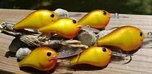 CUSTOM PAINTED RAPALA CRANKBAIT FISHING LURE size DT6 or DT10 FALL SHAD