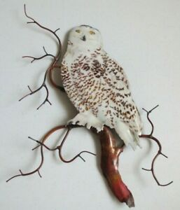 New SNOWY OWL ON BRANCH Metal Bird Wall Art Sculpture Bovano of Cheshire #W8092