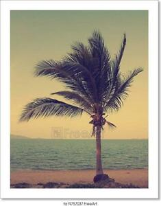 Vintage Coconut Palm Tree On The Beach Art Print Home Decor Wall Art Poster