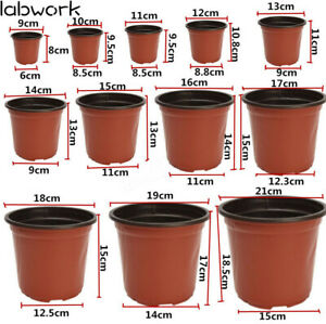 NEW Plastic Plant Flower Pots Nursery Seedlings Pot Plant 100Pcs