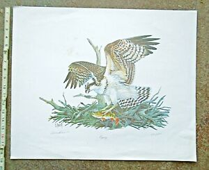 Duane Raver OSPREY SIGNED & NUMBERED LITHOGRAPH PRINT