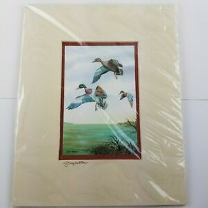 Jerry Miller Signed Mallard Duck Watercolor Print Matted Sealed