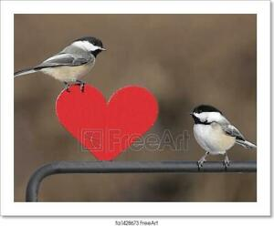 Pair Of Birds With Heart Art/Canvas Print. Poster, Wall Art, Home Decor