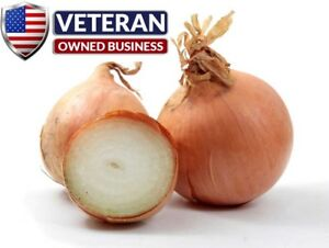 Onion seeds Yellow Sweet Spanish 600 Non GMO and Heirloom vegetable seeds