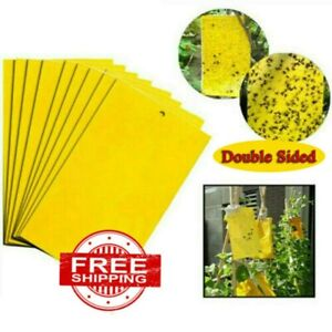 20PC Dual-Sided Yellow Sticky Traps Flying Plant Insect Fungus Gnats Whiteflies