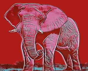 Andy Warhol Andy African Elephant Art Print 11 x 14 $9.99