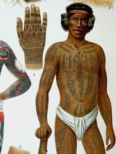 1897 Antique fine lithograph of TATTOOS. Polynesian people. 124 years old print $19.50