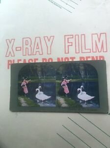 Antique VTG Stereo View Stereoscope PHOTOGRAPH Ingersoll 62 Boy Girl Feed Swans $27.02