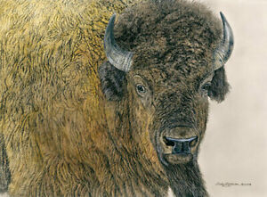 Slow Bull Judy Larson AP 30 22x16 Canvas Signed NEW Giclee Buffalo Bison
