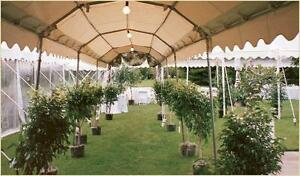 6'x10' marquee tent Commercial walkway cover Party Tent George Maser
