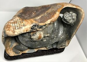 Antique Chinese Hand Carved Jade Turtle Sculpture 72 Lbs 19
