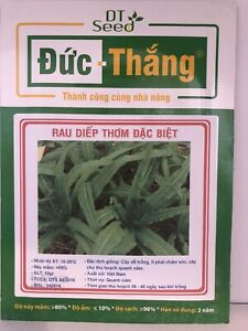 Aromatic lettuce Vegetable Seed ( Rau Diếp Thơm )