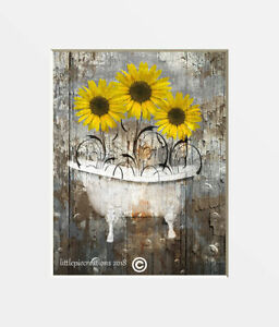 Sunflowers Farmhouse Rustic Bathroom Home Decor Wall Art Photography Picture $34.99