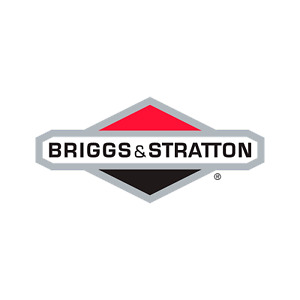 Briggs & Stratton Genuine 80083862 SHORT BLOCK (MDL 35) ASSY Replacement Part