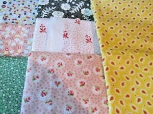 F887 Flora fabric by Robyn Pandolph 1 yard pink with roses OOP NEW SALE