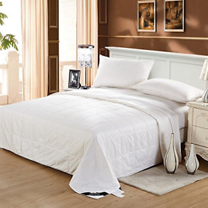 LilySilk Silk Comforter Queen Washable Cotton Covered Filled with 100 Percent