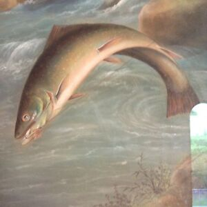 Antique Painting 1906 By Alex Bower. Large Trout Sports Collectible $1599.99