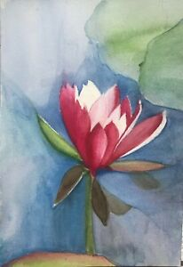 watercolor floral original of a water lily $60.00