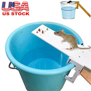 2021 Walk The Plank Mouse Trap Rodent Bucket Rat Auto Reset Mice Catcher Humane