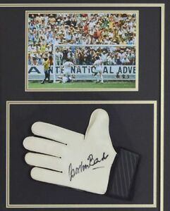 Signed Autographed Pele Shirt & Gordon Banks Glove -World Cup Display