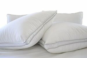 Natural Comfort ALLERGY SHIELDS Luxurious Down Alternative Pillows King 45 Oz