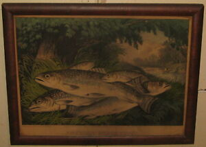 Antique CURRIER & IVES 'American Brook Trout' FISHING Sporting ART Lithograph