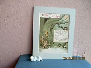 antique lithograph of baby crocus by R. Andre 1884
