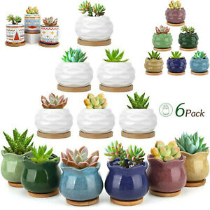 Luxspire Succulent Pots 3/6Pcs Ceramic Flower Cactus Plant Pot Planter Container