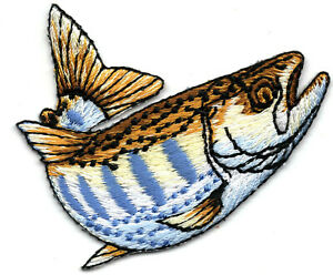 STRIPED TROUT FISH Iron On Patch FISHING FRESHWATER