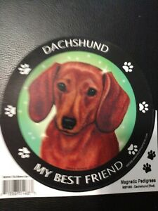 Dachshund Magnetic Picture $2.25