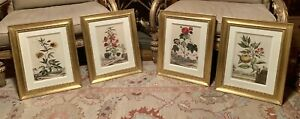 Four 4 Signed and Numbered Trowbridge Gallery Beverly Hall Botanical Prints $295.00