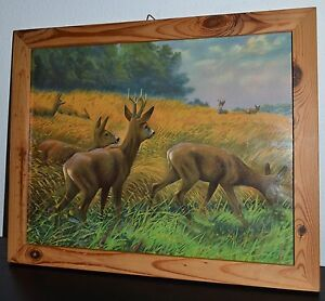 OLD BLACK FOREST HUNTING PICTURE ROEBUCK DEER LITHOGRAPH GERMANY c1890
