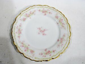 Old BAWO & DOTTER Elite Works Limoges BWD4 Floral & Vines 6 Salad Plates