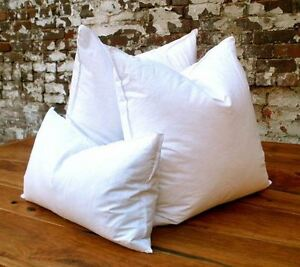10% Goose Down 90% Duck Feather PILLOW INSERT Form WHITE Made in US Minimum 2