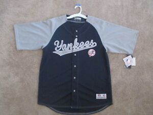 N Y Yankees True Fan Stitched Sewn Button Down Jersey Shirt BlueGrey baseball L