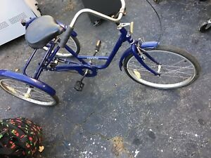 Acclaim Adult Tricycle