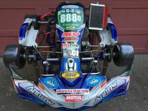 Shifter Kart For Sale