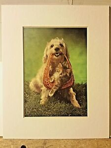 Portal Publications 1988 Best Freinds Richard Stacks Lithograph CPFE007 24 $14.99