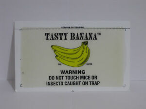 15 CatchMaster Banana Flavor Mouse Mice Insect Rodent Control Glue Board Traps