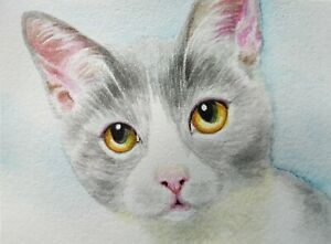 ACEO Original Art Card Cat Grey and White Cat Watercolor Painting Free Shipping $19.99