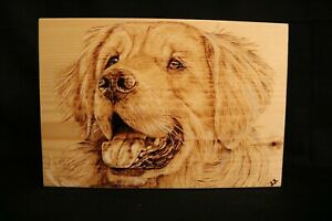 Golden Retriever hand made wood burnt picture on pine