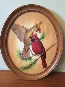 Vintage Lithograph Pair of Cardinals Birds on Pine Branch 9quot; x 11quot; Framed $29.00