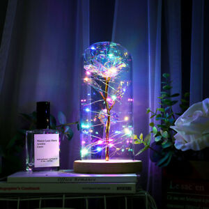 LED Enchanted Galaxy Rose Eternal 24K Gold Foil Flower In Dome Valentines Gift