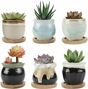 Small Ceramic Succulent Planter Pots with Bamboo Tray Set of 6