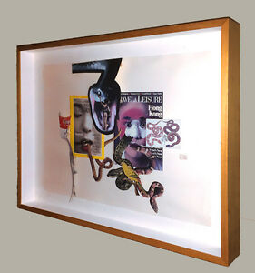 Collage in Shadow Box 28