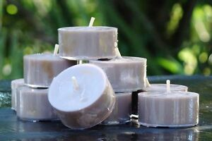 10pk 120hr/pack DARK CHOCOLATE BORDEAUX Scented ORGANIC SOY TEA LIGHT CANDLES
