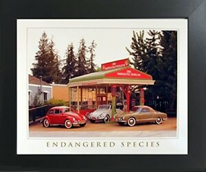 Endangered Species Volkswagen VW Classics Wall Contemporary Black Framed Picture $54.98