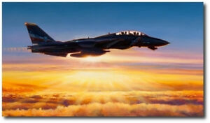 In The Courtyard Of God by Rick Herter Navy F 14 Tomcat Aviation Art Canvas